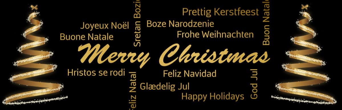 Merry Christmas and a Happy New Year from the PowerLanguage team!